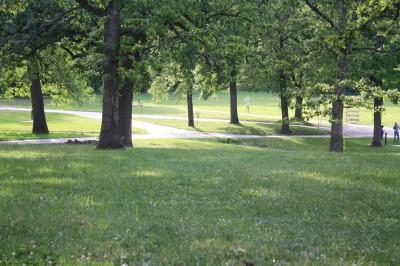 Gunn Park, Main course, Hole 14 Tee pad