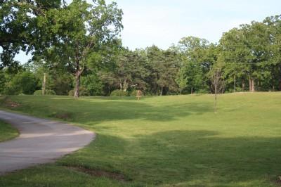Gunn Park, Main course, Hole 16 Tee pad