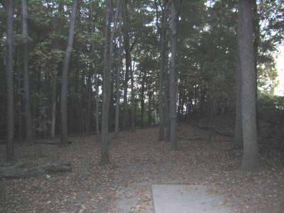 Cass Benton Hills, Main course, Hole 1 Short tee pad
