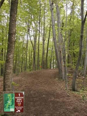 Cass Benton Hills, Main course, Hole 1 Long tee pad