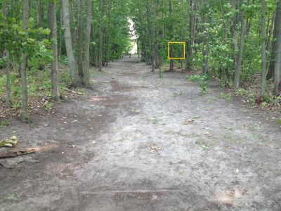 Ross Park, Main, Hole 9 Tee pad