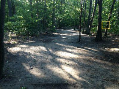 Ross Park, Main, Hole 8 Tee pad