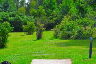 Seymour Lake Park, Main course, Hole 8 Tee pad