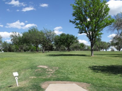 Thompson Park, Main course, Hole 8 Tee pad