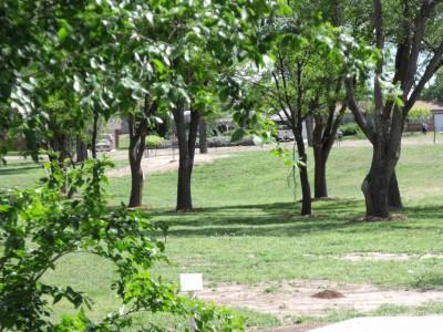 Thompson Park, Main course, Hole 5 Tee pad