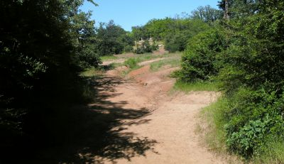 Veteran's Park, Main course, Hole 6 Tee pad