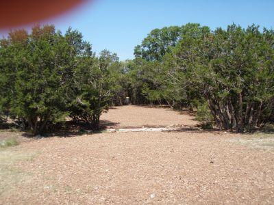 Slaughter Creek Metro Park (Circle C), Main course, Hole 1 Midrange approach