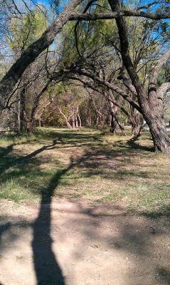 Comanche Trail Park, Main course, Hole 22 Tee pad