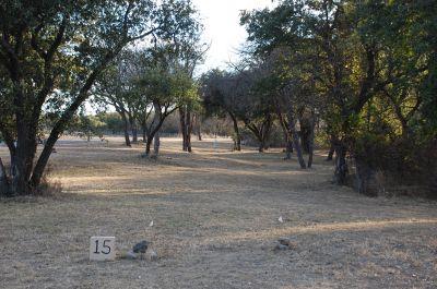 Brady Disc Golf Course, Main course, Hole 15 Tee pad