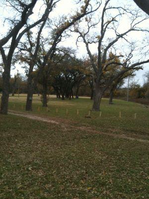 Brady Disc Golf Course, Main course, Hole 10 Tee pad