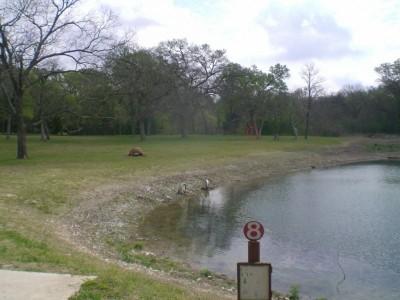 Lester Lorch Park, Beaver, Hole 8 Tee pad