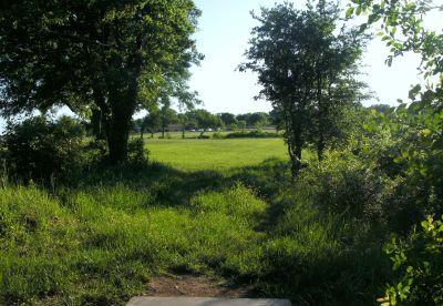 Bicentennial DGC, Main course, Hole 17 Long tee pad