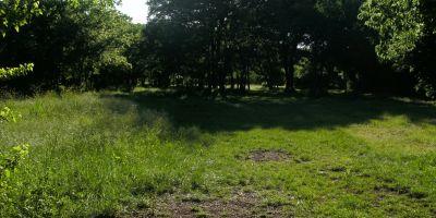 Bicentennial DGC, Main course, Hole 11 Short tee pad