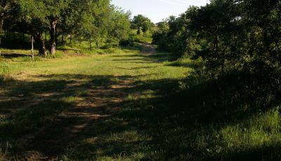 Bicentennial DGC, Main course, Hole 12 Short tee pad