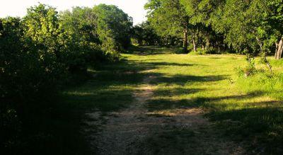 Bicentennial DGC, Main course, Hole 12 Reverse (back up the fairway)