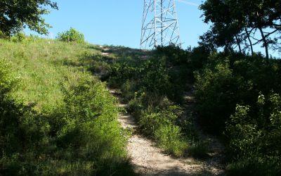 Bicentennial DGC, Main course, Hole 7 Short tee pad
