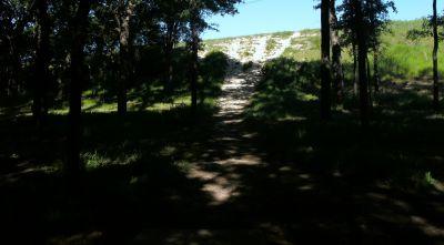 Bicentennial DGC, Main course, Hole 5 Short tee pad