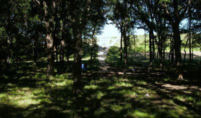 Bicentennial DGC, Main course, Hole 5 Long tee pad