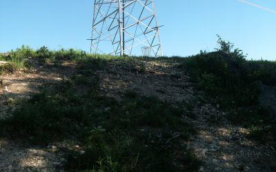 Bicentennial DGC, Main course, Hole 7 Short approach
