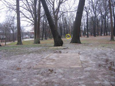 Wagner Park, Main course, Hole 2 Long tee pad