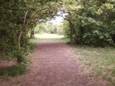 Arcadia Park, Main course, Hole 14 Tee pad