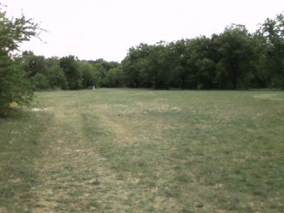 Arcadia Park, Main course, Hole 15 Tee pad