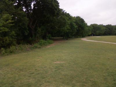 Arcadia Park, Main course, Hole 2 Tee pad