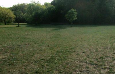 Z Boaz Park, Main course, Hole 12 Long approach