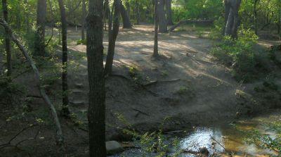 Z Boaz Park, Main course, Hole 14 Long approach