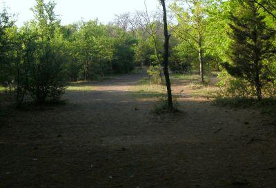 Z Boaz Park, Main course, Hole 16 Tee pad