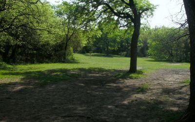 Z Boaz Park, Main course, Hole 5 Midrange approach