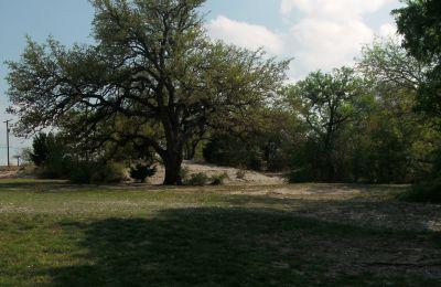 Z Boaz Park, Main course, Hole 6 Long approach