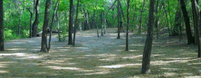 Z Boaz Park, Main course, Hole 15 Midrange approach