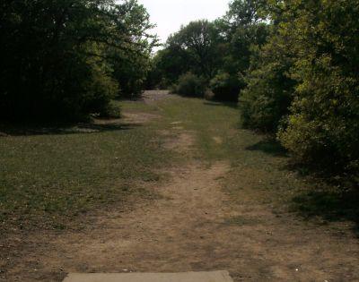 Z Boaz Park, Main course, Hole 7 Short tee pad