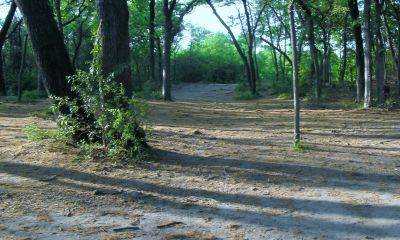 Z Boaz Park, Main course, Hole 17 Reverse (back up the fairway)