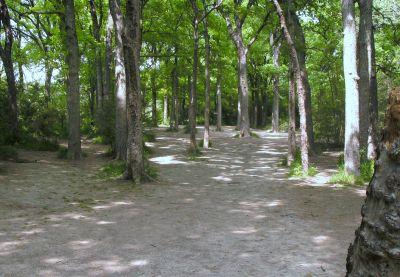 Z Boaz Park, Main course, Hole 1 Long approach
