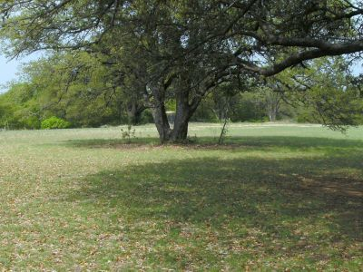 Z Boaz Park, Main course, Hole 3 Midrange approach