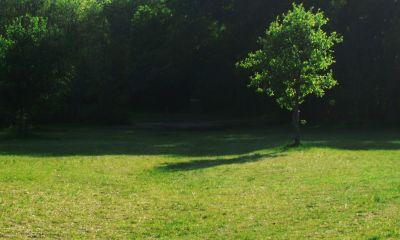 Z Boaz Park, Main course, Hole 12 Midrange approach