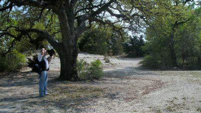 Z Boaz Park, Main course, Hole 6 Midrange approach