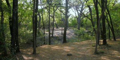 Z Boaz Park, Main course, Hole 14 Short tee pad