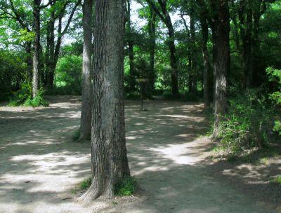 Z Boaz Park, Main course, Hole 1 Short approach