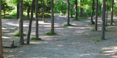Z Boaz Park, Main course, Hole 11 Midrange approach