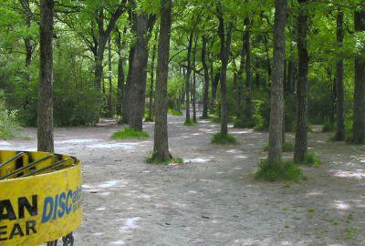 Z Boaz Park, Main course, Hole 1 Reverse (back up the fairway)
