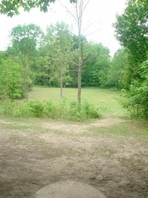 Flip City, Main course, Hole 6 Long tee pad
