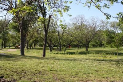 Audubon Park, Main course, Hole 7 Tee pad