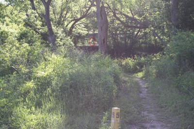Audubon Park, Main course, Hole 5 Tee pad