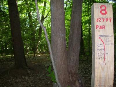 Rycenga Park, Main course, Hole 8 Tee pad