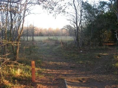 Agnes Moffitt Park, Main course, Hole 17 Long tee pad