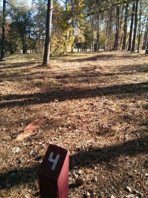 Mason Park, Main course, Hole 4 Short tee pad