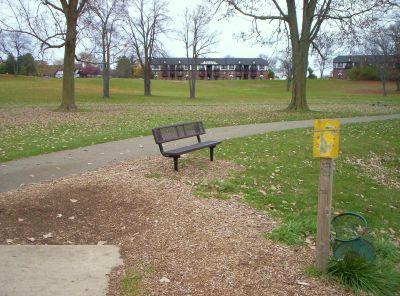 Begg Park, Main course, Hole 7 Tee pad